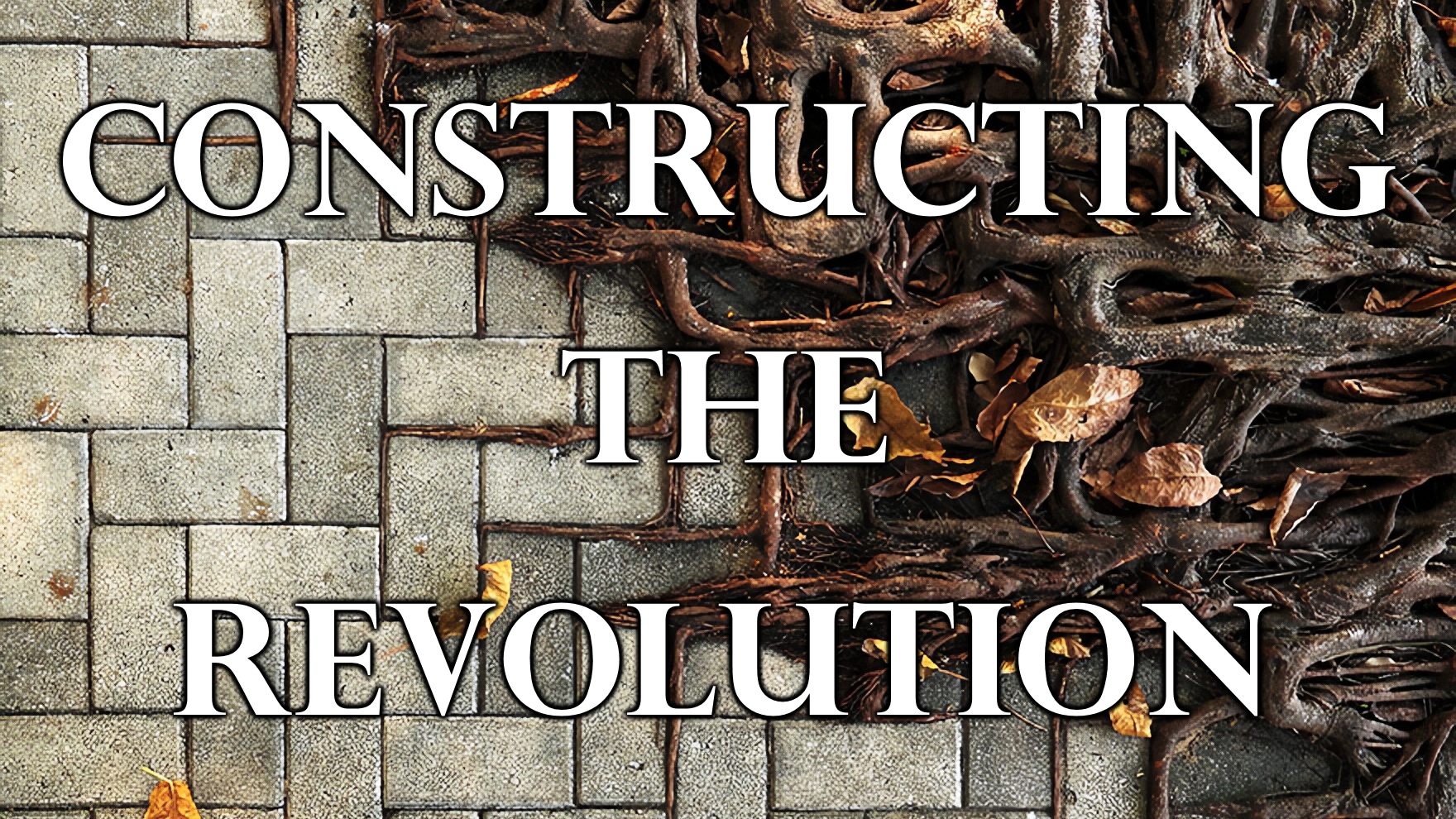 Constructing the Revolution